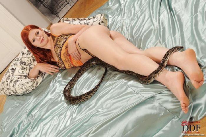 Фетиш ебля с ненасытной девушкой, которая шалит со змеей